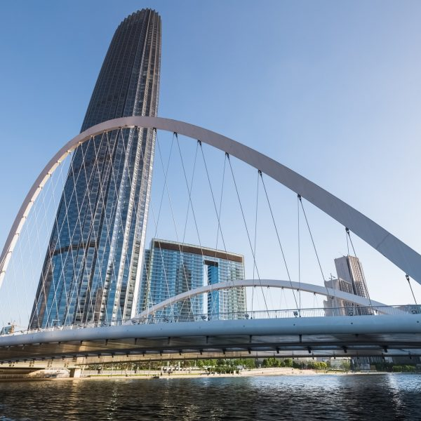 tianjin office building and bridge